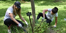 Earth Day in Toronto: Volunteer with One Tree Planted